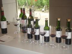 7916962722 1b13e623a8 m Bordeaux 2009