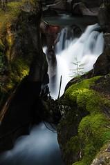 Avalanche Falls - Glacier National Park, Montana (ahmer_inam) Tags: longexposure blue waterfall montana slow glaciernationalpark avalanchecreek rockflour neutraldensity avalanchefalls glaciermelt nikon18135mm nikond300 bwkaesemanncircularpolarizer tiffen06ndfilter