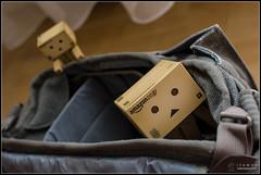 Ready (Only in RAW ) Tags: japan toys happy robot amazon box explorer mini days cardboard danny 365 danbo amazoncojp revoltech danboard minidanbo