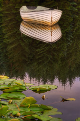 Silent Reflection (2) (Shuggie!!) Tags: water forest reflections landscape boats scotland waterlilies trossachs hdr lochrusky