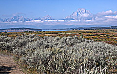 My view of The Tetons (cpcook) Tags: wyoming hdr wy grandtetonnationalpark canon50mmf14 canoneos5dmarkiii cpcook