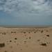 ... antes pertencentes ao Saara Ocidental