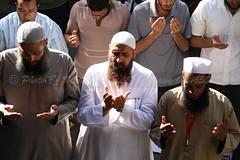 (MahMoud.ELSheShtawy.Mesh.Photographer) Tags: 24  2012