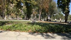 2012-09-22-231 (vale 83) Tags: park nokia belgrade n8 tamajdan