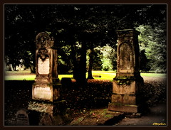 Kthes Nachfeier (ottosohn) Tags: friedhof germany satire humor sofie rudolf shortstory ruhrgebiet gedicht klatsch lisbeth kuchen dialekt kthe monolog gesprch reim beerdigung niederrhein prosa glosse bienenstich tratsch nachfeier mundart heiter kurzgeschichte duisburgrheinhausen moerserstrasse moersmeerbeck leichenschmaus gerdtrynka ottosohn mygearandme mygearandmepremium mygearandmebronze mygearandmesilver mygearandmegold grafschaftmoers rememberthatmomentlevel1 kthesnachfeier beerdigungskaffee