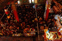 His Holiness Jigdal Dagchen Sakya leads the sangha in reflection on the initiation and vows, monks, lamas, students, shrine set up with formal offerings, flower seed pod decor, marigolds, Sakya Lamdre, Tharlam Monastery, Boudha, Kathmandu, Nepal