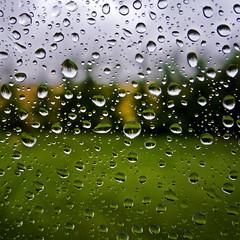 Cubismo Esfrico (Walimai.photo) Tags: macro verde green window grass rain ventana lumix lluvia focus drop panasonic gota foco hierba lx5 thechallengefactory