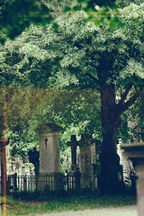 (Px4u by Team Cu29) Tags: friedhof cemetery grave graveyard dead death headstone tomb tombstone kreuz gravestone zaun wald baum stpeter erinnerung andenken gedenken grabmal straubing grabsttte petersfriedhof abgrenzung letzteruhesttte