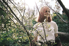 () Tags: pink hair sunset sunlight sun short sakura blossom bright flowers green nature park sky branches digital girl model portrait forest spring          evening light delicate fade