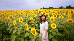 Young woman standing in sunflower field (Apricot Cafe) Tags: asianethnicity canonef1635mmf28liiusm japan kanagawa enjoy happiness nature oneperson outdoor refresh strawhat summer sunflower traveldestinations vacation walking weekendactivities woman youngadult zamashi kanagawaken jp img647048
