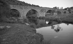 Bridge of the river Tormes (BW) (Modesto Vega) Tags: bridge arch reflection river rivertormes puente arco rio riotormes blackwhite blancoynegro monochrome monocromo navacepedadetormes sierradegredos