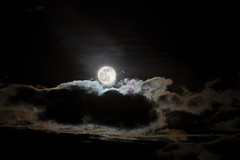 Salida de la luna (Jos M. Arboleda) Tags: noche cielo salida luna rise moon lunallena fullmoon astronoma popayn colombia canon 5d markiii tamron sp150600mmf563divcusda011 jose arboleda josmarboledac
