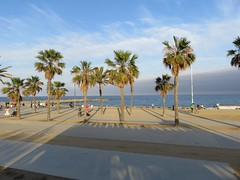 Barceloneta (Susannaphotographer) Tags: barceloneta beach street barcelona spain spagna espana catalonia playa spiaggia palmtrees palmstreet beachstreet lungomare
