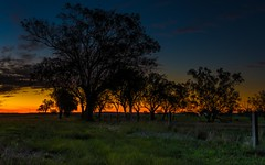 Sunset near Felton - Queensland - Australia (andrew.walker28) Tags: sunset red orange yellow evening trees sundown colorful colourful soft light