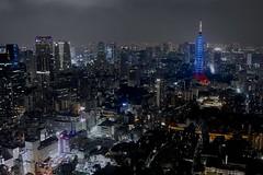 Tokyo Night View (joka2000) Tags: night tokyotower withouttripod