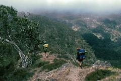 Heading into Horrible Gap, 1984 (NettyA) Tags: 35mm australia spanunlimited film scannedslide bushwalking 1984 victoria vic horriblegap crosscutsaw victorianalps bushwalkers cloudy australianalpswalkingtrack alpinenationalpark kodachrome snowgum