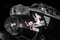 Lady Orchid (Stephen Gardiner) Tags: hamilton ontario 2016 canadianwarplaneheritagemuseum lancster flyingfortress mitchell worldwar2 b17 b25 avro boeing northamericanaviation night plane aircraft propeller noseart pentax k3ii 1645