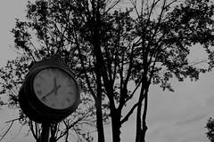 Tiempos (***Metamorfosis***) Tags: tiempo reloj