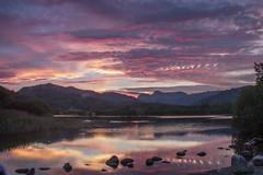 Elterwater Sunset (loftylion9) Tags: grasmere lakedistrict sunrise mist sunset lonetree tilberthwaite castleriggstonecircle langdalepikes