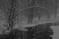 "IMG_20160914_234716 (""Jimmer"" ( http://jim-vance.pixels.com )) Tags: winter wintery snow"