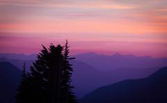 Colors in Fading Light (El jacapista) Tags: light sunset purple magenta rainier 7d canon7d
