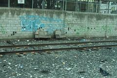 La Bestia (Benja47) Tags: railroad train tren thebeast vias labestia