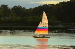 Hobie Dream (hpaich) Tags: desktop wallpaper beach water sailboat landscape bay boat background shore boating sail skiff hobie desktopwallpaper desktopbackground raritanbay