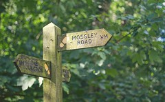 Signs (purpleface) Tags: road wood summer signs sunshine bokeh hill reservoir ashton knott tameside mossely