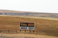 Since 1931 (the_mel) Tags: wall southdakota highway billboard advertisement drug 90 i90 walldrug