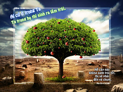 Fruitful life (estherhuynhbich) Tags: wallpaper bible verse hnhnn growinginchrist kinhthnh cugc