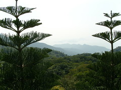 View of the surrounding country side (oldandsolo) Tags: china hk hongkong buddhism bigbuddha lantauisland polinmonastery chinesetemple chineseculture ngongping tiantanbuddha ngongpingbuddha buddhistfaith chinesereligiousshrine largestseatedbronzebuddha