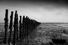 East Mersea (Will.Morgan) Tags: sky bw white black beach digital landscape island nikon scenery east nikkor mersea d90