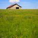 """Prairie (aux nombreuses orchidées) aux abords des tourbières de Frasne. • <a style=""""font-size:0.8em;"""" href=""""http://www.flickr.com/photos/53131727@N04/7989396165/"""" target=""""_blank"""">View on Flickr</a>"""