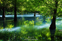 (nodie26) Tags: lake tree water pine sunrise mirror tour teal taiwan    hualien                    aplusphoto