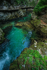 Slovnia-110527-074-1 (Kelly Cheng) Tags: travel color colour green tourism nature water vertical forest river landscape daylight colorful europe day outdoo