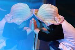 Reflexions (J.Salmoral) Tags: vacation portrait japan retrato 日本 nippon osaka portret japon giappone acuario nihon japó портрет चित्र retrat portræt porträtt 肖像 大阪市 aquari arckép canonef24105f4lisusm जपान् 일본جاپان