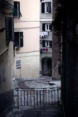One narrow path - Genoa (Fetch_69) Tags: genoa genova alleys caruggi