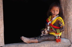 Metuktire - Kayapo (serge guiraud) Tags: brazil portrait festival brasil amazon para tribal exhibition exposition xingu tribe ethnic matogrosso jabiru tribo brsil plume amazonia tribu amazonie matis amazone etnic amrique xavante asurini amrindien etnia kaiapo gaviao kuarup ethnie yawalapiti kayapo javari kuikuro xerente peinturecorporelle kalapalo karaja mehinako kamaiura yawari artamrindien sudamrique tapirap peuplesindigenes povoindigena parcduxingu parquedoxingu sergeguiraud jabiruprod expositionamazonie artdelaplume artducorps bassinamazonien amazonstribe amazonieindidennecom basinamazonien zo hetohoky parqueindidigenadoxingu jungletribes populationautochtones indiendamazonie