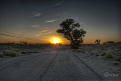 Stolen Sunset (Lori_Bucci_Photography) Tags: california travel trees sunset sky sun sunlight inspiration tree tourism nature beauty clouds canon landscape hope la losangeles desert roadtrip powerlines lancaster powerline lonely inspirational antelopevalley telephonepole sunbeam deserted palmdale sunray lonliness desertlandscape desertroad desertsunset beautifulsunset loribucciphotography lorilockhartbucci
