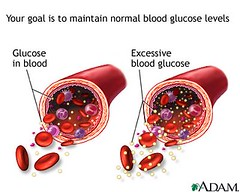 Naturally Lower Your Blood Sugar (gerardoalmaraz) Tags: your lower naturally insulin glucose bellyfat bloodsugar afterburneffect naturallyloweryourbloodsugar