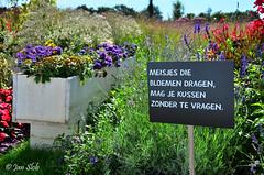 Meisjes die bloemen dragen, (Janslb) Tags: venlo bloemen floriade tekst allrightsreserved spreekwoord meisjesdiebloemendragenmagjekussenzondertevragen