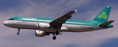 "Aer Lingus Airbus A320-214 EI-DVH ""St. Ciara"" (FlyingJ31) Tags: aer lingus airbus a320214 eidvh stciara ciara ein aerlingus airbusa320 airbus320 airbusa320214 airbusa320200 shamrock a320 320 320214 a322 egll lhr london heathrow londonheathrow international airport croydon united kingdom unitedkingdom great britain uk myrtle avenue myrtleavenue tarmac terminal taxiway runway plane airplane airline airliner aircraft jet jetplane ramp photo photog photography photograph planespotter planespotting"