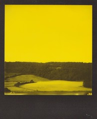 polaroid73 (Emma Conner) Tags: landscape polaroid polaroid600 instant film impossibleproject impossible project yellow black duo chrome