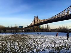 Roosevelt Island #NYC (josselyn.ao) Tags: newyork roosevelt island eeuu nyc