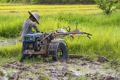 ChiangRai_2676 (JCS75) Tags: asia asie thailand thailande canon chiangrai