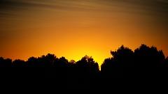 SUNSET (ErickLlanosR) Tags: sunset contraluz atardecer albacete orange sky canon700d