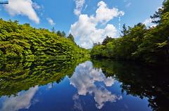 (Nature Photography (miraclellie)) Tags:  japan   karuizawa