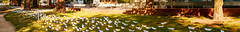 Refugees welcome? (UsualRedAnt) Tags: 70d tamron70300mm flchtling canon weis oranienplatz panorama papier nofb streetart berlin f13 refugees kunst park kreuzberg architektur deutschland aktion germany