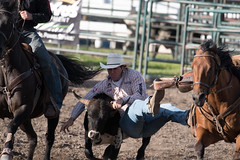 Tak_CPRA_2016-4737 (takahashi.blair) Tags: coachtak rodeo blairtakahashitakahashiblaircoachtakblairtakahashi pincher creek barrel racing bronc rope bareback steer bullriding