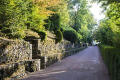 _DSC7596 (Robby68) Tags: vert marqueyssac jardin dordogne nature france soir suspendu